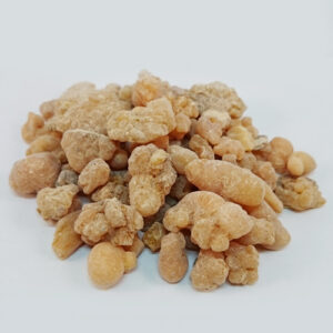 Omani Red Frankincense